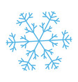 snowflake ornate vector image