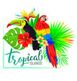 tropical island composition with toucan parrot vector image vector image