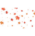 autumn maple leaves background falling autumn vector image vector image