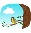 bird on a tree vector image