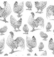 chicken rooster chick sketch set hand drawn vector image vector image