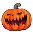 jack o lantern halloween pumpkin vector image vector image