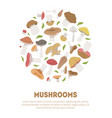 poisonous and edible mushrooms banner template vector image vector image