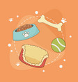 set care pets accessories vector image