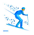 skier with blue patterns running downhill vector image vector image