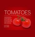 three ripe red tomatoes on a branch vector image vector image