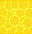 slices of lemon texture vector image