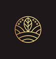 Abstract element for design gold decoration