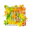 autumn card with red yellow green maple leaves vector image vector image