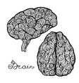 Brain Doodle Set vector image vector image