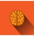 Flat Human Brain with Long Shadow vector image vector image