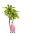 palm and pink suitcase vector image