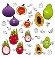Papaya dragonfruit fig fruits cartoon characters vector image vector image