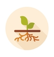 Plant with roots flat icon garden vector image vector image