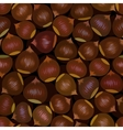seamless chestnut background vector image vector image