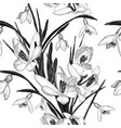 seamless pattern with snowdrop flowers black and vector image