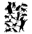beagle dog animal silhouette vector image