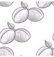drawing seamless pattern with apricots vector image