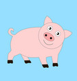 funny good pig vector image vector image