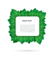 Green leaves frame vector image vector image