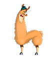 llama-hipster in a hat vector image vector image