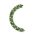 olive branch half bow in green color vector image vector image
