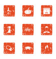 prank icons set grunge style vector image vector image