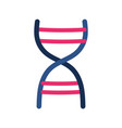 isolated dna structure design vector image