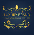 luxury brand gold logo template modern design vect vector image