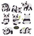 pandas set vector image vector image