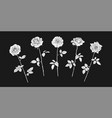 five rose flowers in engraving style with leaves vector image vector image