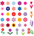 flower color vector image vector image