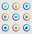 food icons colored set with bulb corn nutrition vector image