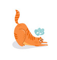 postcard with character is a cute cat vector image