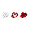 rose hand drawing and colored a blossoming vector image vector image