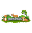 the leopard are playing in garden vector image