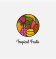 tropical fruits linear logo on white background vector image vector image
