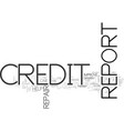 why is it necessary to do credit report repair vector image vector image