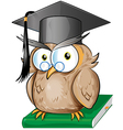 Wise owl cartoon vector image