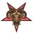 baphomet demon goat head vector image vector image
