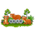 bear is playinig in the garden vector image