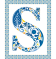Blue letter S vector image vector image