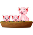 cartoon three little pig riding on a boat vector image vector image