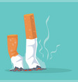 cigarettes with smoking product flat vector image vector image
