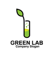 Green Lab Design vector image vector image