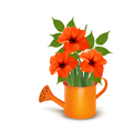 Fresh summer flowers growing in a watering can vector image