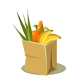Brown Paper Bag With Food vector image vector image