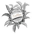 coffee frame hand drawing vintage engraving logo vector image vector image