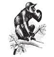 hanaman monkey vintage vector image vector image