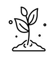 plant in soil isolated outline icon gardening and vector image